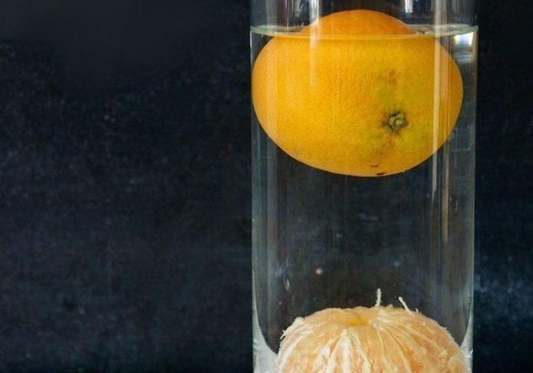 gemi portakal deney batmaz